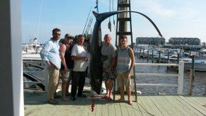 Group with a shark